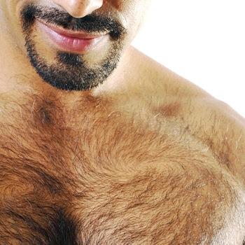 Le poil, attirance ou répulsion ?