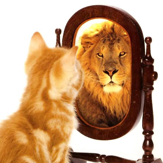 L'estime de soi