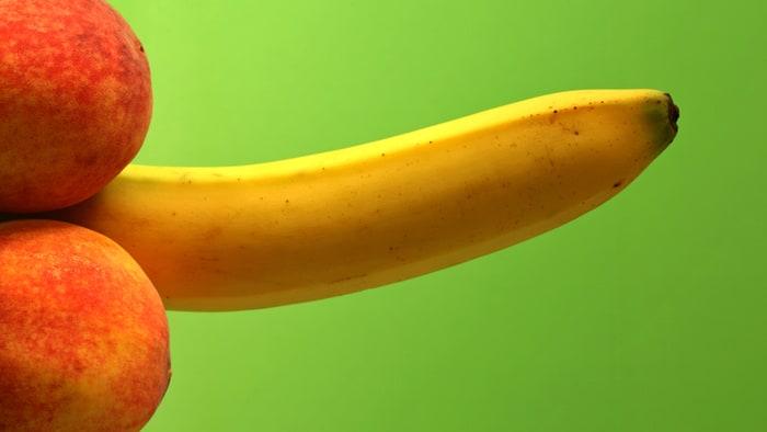Le pénis