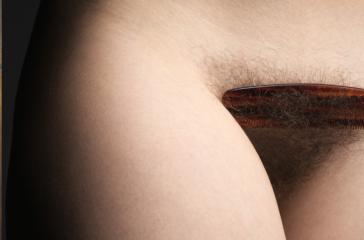 Le pouvoir sensoriel des poils